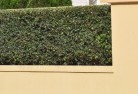Afterlee Decorative fencing 30